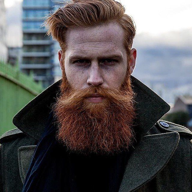 d87be69778d7fedbb64360e445280b5f--awesome-beards-ginger-beard